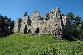 Zamek Danków